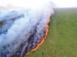 Amazônia perde o equivalente ao território do Chile em 30 anos. Agronegócio avança 172%