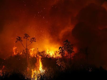 O passar da boiada em meio às chamas