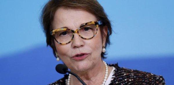 """""""Ministra da agricultura espalha fake news que o boi é o bombeiro do Pantanal"""", diz Letícia Parks"""