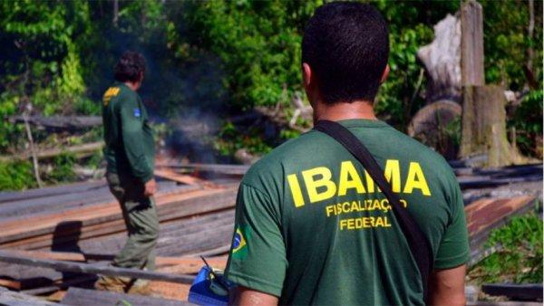 Ibama e Instituto Chico Mendes sofrem ataques após serem criticados por Bolsonaro