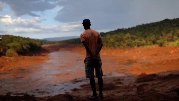 Tragédia capitalista de Brumadinho pode acarretar surto de dengue e febre amarela na região