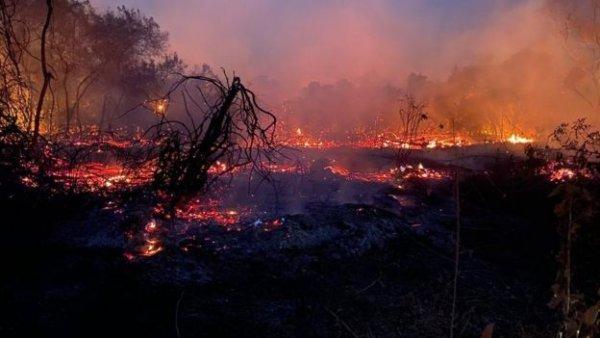 Incêndio avança em Parque Nacional Serra do Cipó, em Minas Gerais