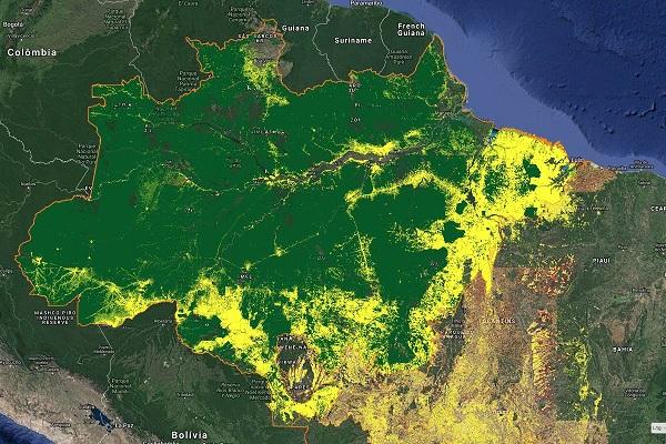 Governo trava 38% do orçamento de monitoramento de florestas do Inpe