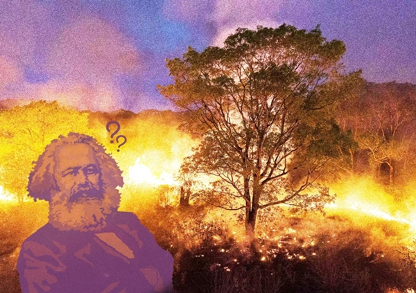 Ainda sobre as contribuições do marxismo para analisar e resolver a crise ecológica global